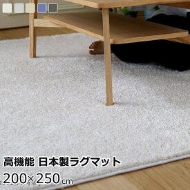 ラグマット 200×250cm(長方形) ふわふわ 『イルミエ』 防ダニ/防炎/滑り止め/床暖房・ホットカーペット対応 全5色 スミノエ 日本製