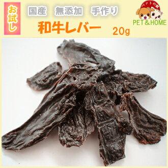 일본소 레버 20 g