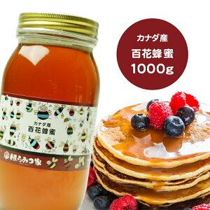 【20%offクーポン】【賞味期限2022.09】カナダ産純粋百花はちみつ 1000g 蜂蜜【アウトレット品】 ハチミツ ハニー はちみつ 非加熱 【まとめ買い対象商品】 〔Honey House〕蜂蜜コーヒーなどに