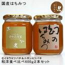国産はちみつ幻のはちみつ(日本蜜蜂)&伊吹百草蜜600g2本セット和洋食べ比べセット
