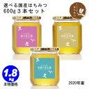 はちみつ 国産 600g3本セット はちみつ生産直売 非加熱 純粋な蜂蜜 春日養蜂場