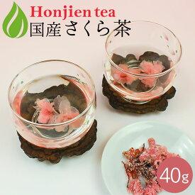 ● さくら茶・桜茶 40g ほんぢ園 < サクラ茶 花 cherry tea さくら湯 春 おもてなし > 送料無料 /セ/