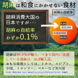 ●胡麻麦茶国産黒胡麻麦茶5gx50p(250gティーバッグ)ほんぢ園<送料無料血圧測定ペットボトルよりお得!ごま麦茶ノンカフェイン>/セ/