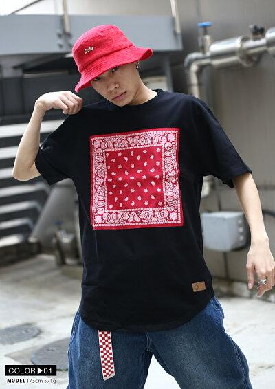 SOUTHPOLE(サウスポール)のTシャツ(ロゴ)