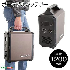 ●ポイント4.5倍●ポータブルバッテリー EB120(1200Wh)【代引不可】 [03]