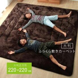 ●ポイント4.5倍●ラグ こたつ敷き布団 正方形 幅広ラグ ブラウン 約220×220cm【代引不可】 [13]