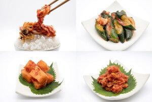 白菜キムチ+チャンジャ+イカキュウリ(イカフェ)+イカ大根(カクテキ)の初回購入だけのお試しキムチセット!