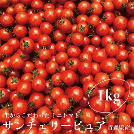 ミニトマト サンチェリーピュア 1kg 青森産 産地直送 クール便発送