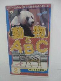 H5 08359 【中古・VHSビデオ】日本語ナレーション「動物とABC2 はじめての英語 N〜Z」 株式会社ピーエスジー