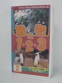 H5 08026【中古・VHSビデオ】「動物と1・2・3 2」はじめての算数 たしざん・ひきざん