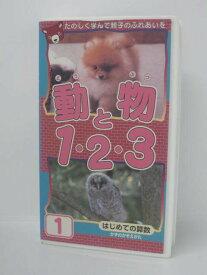 H5 08225 【中古・VHSビデオ】「動物と1・2・3 はじめての算数」ピーエスジー