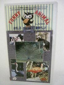 H5 09975【中古・VHSビデオ】「おのしろ動物ランド3」1・クジャク2・鶴 3・白鳥 他。