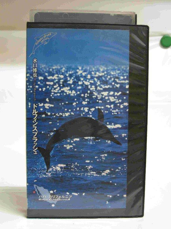 #1 24401【中古】【VHSビデオ】ECHOS OF SEA 水口博也 ドルフィンスプラッシュ バハ・カリフォルニア