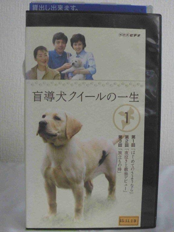 #1 36577【中古】【VHSビデオ】盲導犬クイールの一生 1