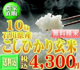 30年産新米コシヒカリ10kg 【送料無料】※一部地域別途負担【石川県産】【こしひかり】【玄米】【10k】【コシヒカリ】