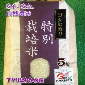 令和元年産【特別栽培米】石川県産コシヒカリ5kg玄米【送料無料※一部地域別途負担】有機肥料100%農家直送