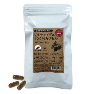 国産クラチャイダム100%カプセル 30粒【送料無料】黒ウコン 黒生姜 黒しょうが 黒ショウガ