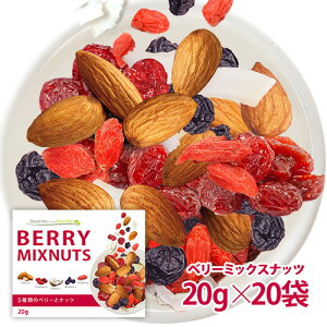 ベリーミックスナッツ 20袋セット 小分け 贅沢な5種類 栄養成分豊富 送料無料 ポスト投函