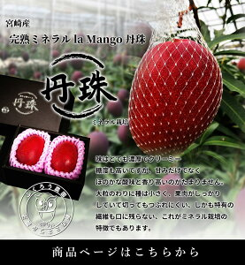 ふくろう農園/宮崎県産 完熟ミネラル la Mango 丹珠/4Lサイズ2個入/宮崎完熟マンゴー
