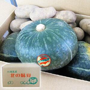 送料無料 じゃがいも メークイン 北海道産 かぼちゃ メークイン 野菜セット 10kg (各 約5kg) 化粧箱入り