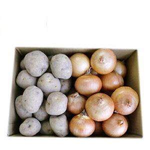送料無料 じゃがいも 男爵いも 玉ねぎ 野菜セット 北海道産 男爵いも たまねぎ 10kg(各5kg)Lサイズ