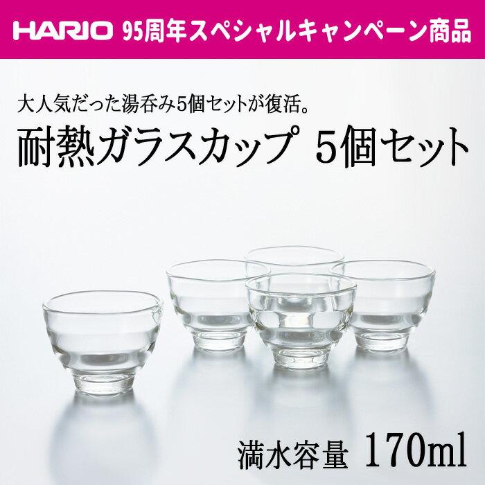 【ブラックフライデー】【全品ポイント5倍】HARIO(ハリオ) 耐熱ガラスカップ5個セット 満水容量170ml