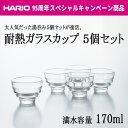 HARIO(ハリオ) 耐熱ガラスカップ5個セット 満水容量170ml