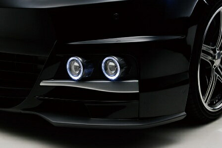 WALD ヴァルド Sports Line Black Bison Edition ヴェルファイア ANH20 25,GGH20 25 LEDナイトシステムインサートアダプター