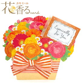 多目的カード 花香るカード カモミール EAR-753-948 ホールマーク 花の香り付ミニカード かもみーる グリーティングカード 立体カード 多用途 母の日にもおす