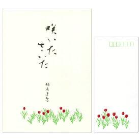 レターセット 鳩居堂 シルク刷り 咲いたさいた(チューリップ) 便箋12枚(1柄)と封筒5枚セット大人 オシャレ シンプル