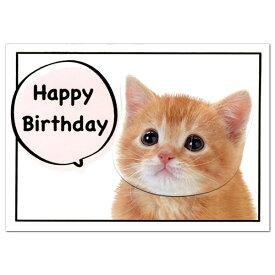 バースデーカード ネコ GK-202 アクティブコーポレーション 猫の顔がフルフル揺れる二つ折り誕生日カード Birthday Card グリーティングカード お誕生お祝い メール便可