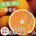ワックス オレンジ