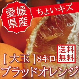 愛媛県産【国産ブラッドオレンジ】訳あり【大玉8キロ】【ちょいキズ】【送料無料】8kg 果物 フルーツ p5