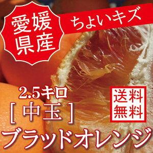 愛媛県産【国産ブラッドオレンジ】訳あり【中玉2.5キロ】【ちょいキズ】【送料無料】2.5kg 果物 フルーツ p5