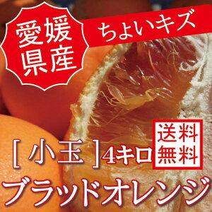 愛媛県産【国産ブラッドオレンジ 訳あり【小玉4キロ】【ちょいキズ】【送料無料】4kg 果物 フルーツ p5