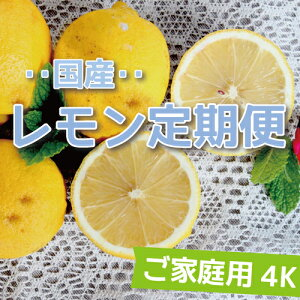 【送料無料】愛媛県大三島産【国産レモン定期便】【ご家庭用】【4K×4回】 p5