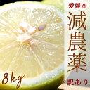 ポイント5倍【愛媛県大三島産】送料無料 国産レモン【サイズばら8キロ】搾汁用・見た目訳訳 訳あり ワケあり わけあり…
