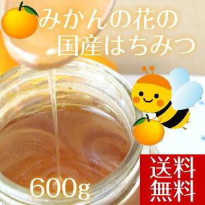 【送料無料】みかん 国産 はちみつ 愛媛県産 みかんハチミツ 天然蜂蜜 600g 純粋 はちみつ 国産 ハチミツ 純粋 蜂蜜 純粋 はちみつ 国産蜂蜜 みかんはちみつ みかん蜂蜜 天然はちみつ 無添加