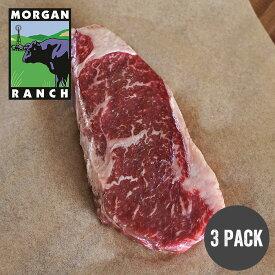 モーガン牧場ビーフ サーロインステーキ 340gx3枚 最高品質 アメリカンビーフ 熟成 グラスフェッド グレインフィニッシュ ホルモン剤不使用 抗生物質不使用