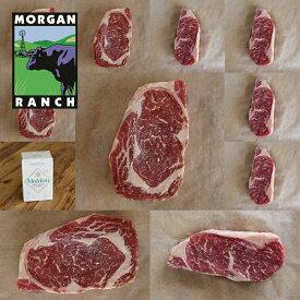 モーガン牧場ビーフ アメリカ産 牛肉 お得な ステーキ ギフトセット 3.1kg 最高品質 アメリカンビーフ 熟成 グラスフェッド グレインフィニッシュ ホルモン剤不使用 抗生物質不使用