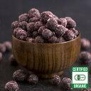 冷凍 有機 JAS オーガニック ブルーベリー 野生種 ワイルド 1kg カナダ産 砂糖不使用