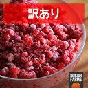 冷凍 スムージー用 ブロークン ラズベリー 1kg トルコ産 砂糖不使用