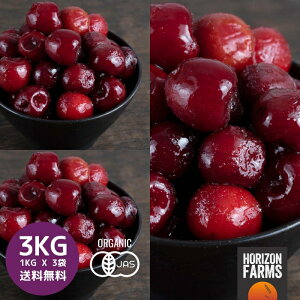 冷凍 有機 JAS オーガニック ダークスイートチェリー 1kg x 3 合計3kg 無糖 無添加 トルコ産 砂糖不使用 冷凍フルーツ 冷凍果物 冷凍果実 業務用 送料無料 サクランボ
