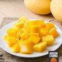冷凍 有機 JAS オーガニック マンゴー 1kg インド産 砂糖不使用