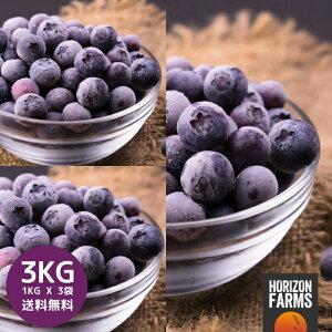 冷凍 ブルーベリー 1kg x 3 合計3kg 無糖 無添加 砂糖不使用 チリ産 冷凍フルーツ 化学物質不使用 冷凍果物 冷凍果実 業務用 送料無料