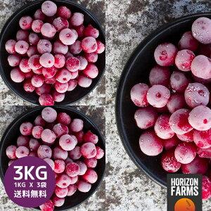 冷凍 サワーチェリー 1kg x 3 合計3kg 無糖 無添加 化学物質不使用 砂糖不使用 トルコ産 冷凍フルーツ 冷凍果物 冷凍果実 業務用 送料無料