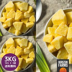 冷凍パイン パイナップル カット 1kg x 3 合計3kg 無糖 無添加 化学物質不使用 砂糖不使用 コスタリカ産 冷凍フルーツ 冷凍果物 冷凍果実 業務用 送料無料