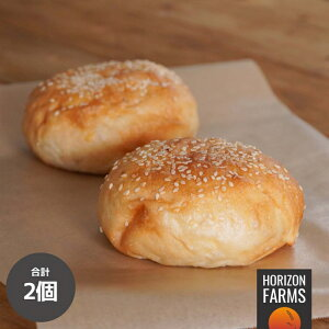 無添加 高品質 ハンバーガー バンズ 冷凍 (2個) ハンバーガー用 パン 添加物不使用 砂糖不使用