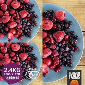 冷凍 有機 JAS オーガニック 冷凍 ミックスベリー 3種 200g x 12 合計2.4kg 無糖 無添加 冷凍フルーツ 冷凍果物 冷凍果実 業務用 送料無料 ワイルドブルーベリー ストロベリー ラズベリー 入り フルーツ