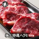 超 プレミア 限定品 鹿児島黒牛 A5 最高ランク 黒毛和牛 極上 特選 ハラミ 100g 塩こしょう付 バーベキューセット 肉 …